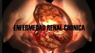 Crónica clasificación renal insuficiencia