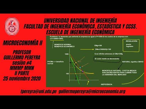 Microeconomía II Monopolio multiplanta y monopolio natural II parte