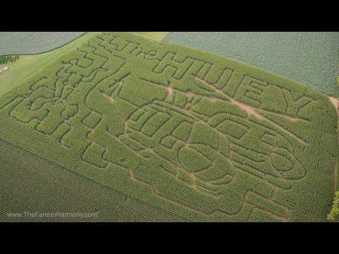 The Farm In Harmony Corn Maze 2019