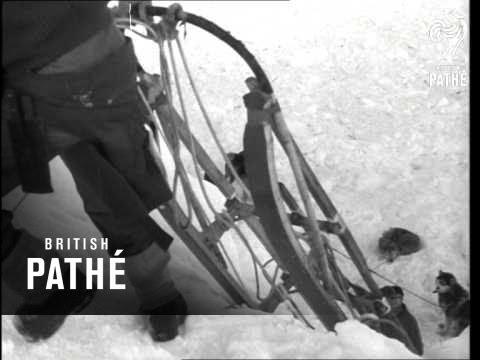 British Antarctic Survey (1964)