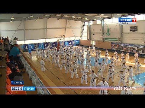 Пензенский каратист получил звание мастера спорта международного класса