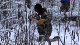 Рейтинг Баженова :Самые опасные животные России 11 серия