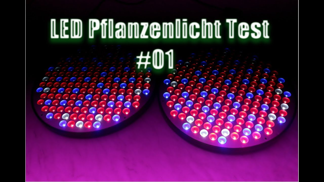 led pflanzen lampen langzeit test 01 youtube. Black Bedroom Furniture Sets. Home Design Ideas