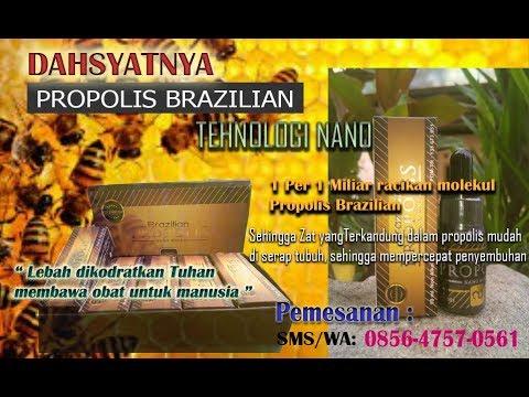 Obat Herbal Aman - Propolis Brazilian Asli 2018