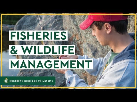 Fisheries And Wildlife Management