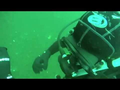 Kingston Boat Dive: Day1Dive1