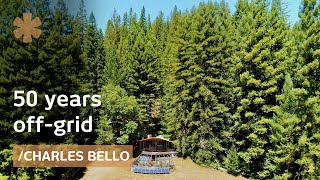 50 years off-grid: architect-maker paradise amid NorCal redwoods