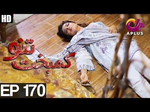 Kambakht Tanno - Episode 170 - A Plus ᴴᴰ Drama