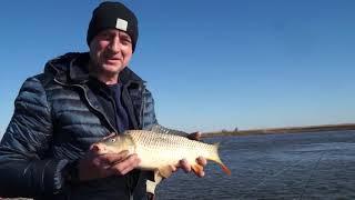 Особенности Астраханской рыбалки в апреле.