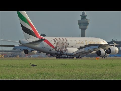 Emirates Real Madrid A380 A6-EOD Landing at Amsterdam Airport Schiphol