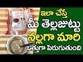కొద్ది రోజుల్లోనే మీ తెల్లజుట్టును నల్లగా మార్చే టిప్ I Health Tips in Telugu I Everything in Telugu