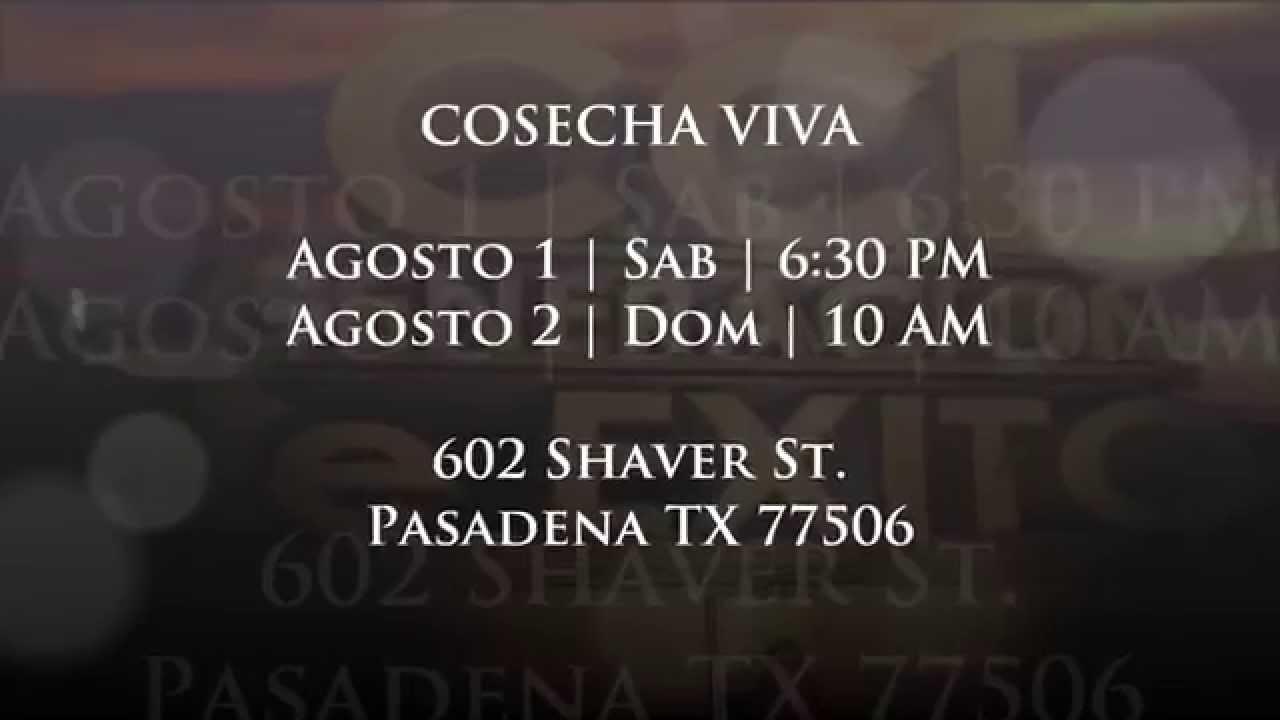Profeta Marcela Acosta 2015 - Iglesia Cosecha Viva - YouTube