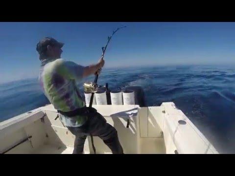 Key Brand Ranch Fishes Panama's Hannibal Bank