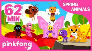 Animals and Bug Songs   +Compilation   Spring Songs   Pinkfong Songs for Children