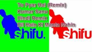 Tu Pyar Hai Kisi Aur (Remix) - Dil Hai Ki Manta Nahin