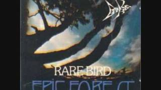 Rare Bird - Title No. 1 Again (Birdman)