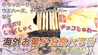 【音フェチ】バリボリしゃくしゃくチョコじゅわー!海外お菓子を食べる【No Talking】