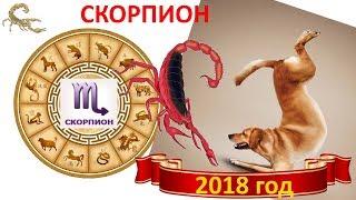 Прогноз для Скорпионов на 2018 год.