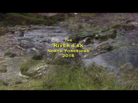 The river Esk North Yorkshire nov 2016