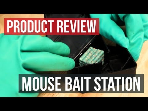Solutions Mouse Bait Station: Product Review