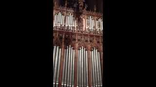 St Patrick Cathedral Organ. Summer 2013