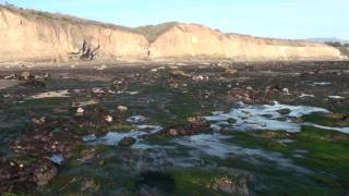 091231 HD low tide west Haskell Beach Goleta California 162536