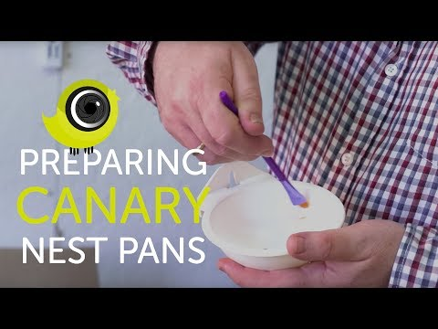 The Best Way to Prepare Canary Nest Pans | The Canary Room Top Tips
