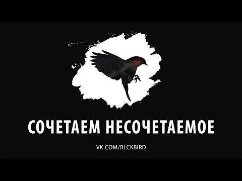 Чёрная Птица - ShowReel 2017