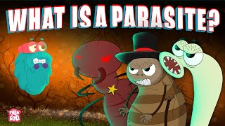 PARASITE | What Is A PARASITE? | Biology For Kids | The Dr Binocs Show | Peekaboo Kidz