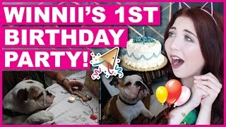 Winnii's 1st Birthday Party!