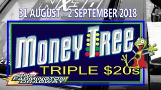 Money Tree Triple $20's - Friday