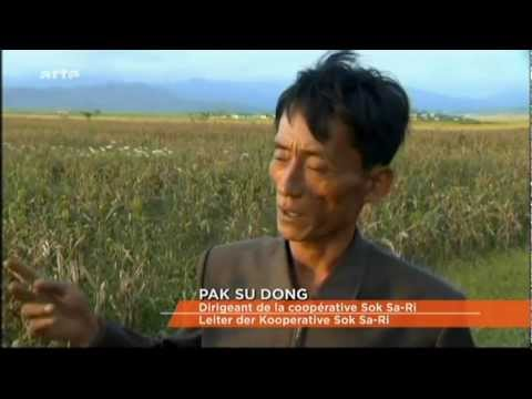 Arte   Arte journal   06 10 2011 famine in north Korea