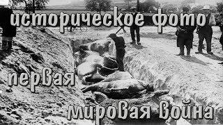 Исторические фотографии ПЕРВОЙ МИРОВОЙ ВОЙНЫ