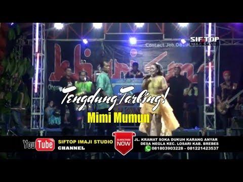 Tengdung Tarling! Paling Adem Gawe Ati Leslesan Mimi Mumun
