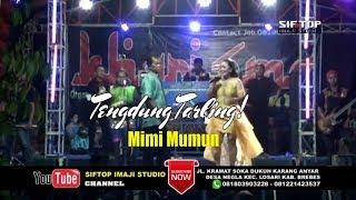 Download lagu Tengdung Tarling Paling Adem Gawe Ati Leslesan Mimi Mumun MP3