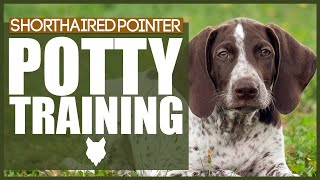 How To Potty Train Your GERMAN SHORTHAIRED POINTER