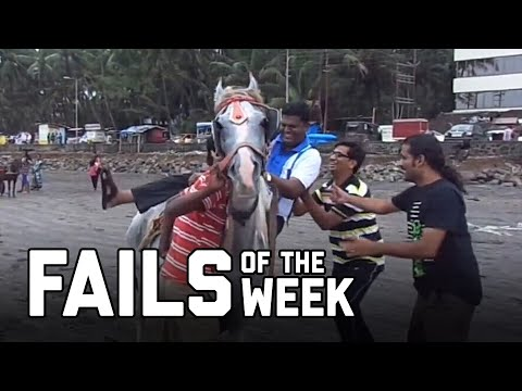 Horsing Around: Fails of the Week (August 2020)