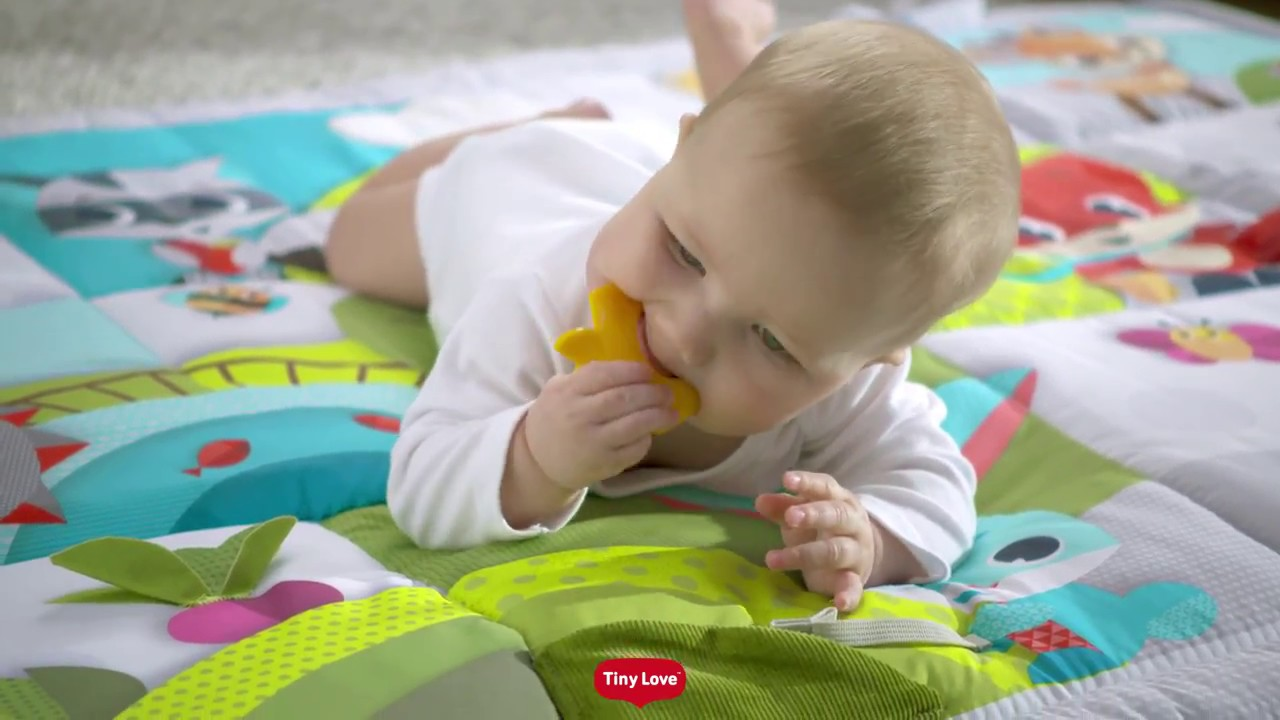 16846579d38ff4 Tiny Love Gymini® & Activity Mats, Baby Gear, Baby Mobiles & Soothers