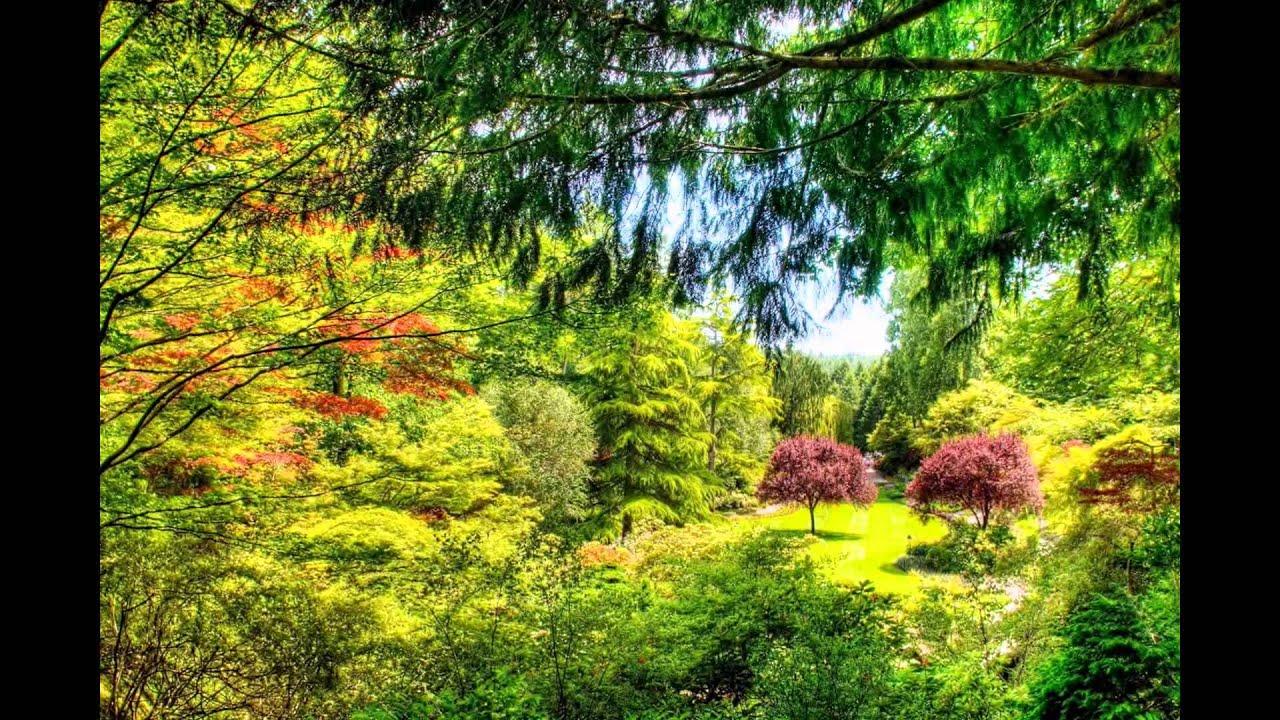Jardines con arte hd 3d arte y jardiner a dise o de for Diseno de jardines 3d