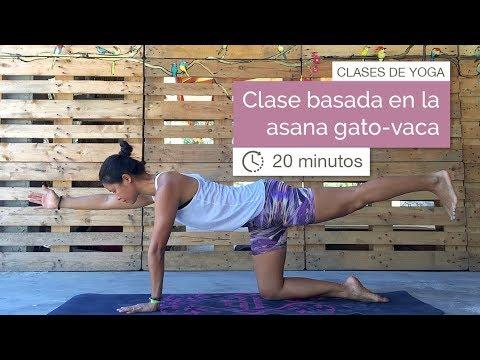 Clase de Yoga basada en la asana Gato-Vaca