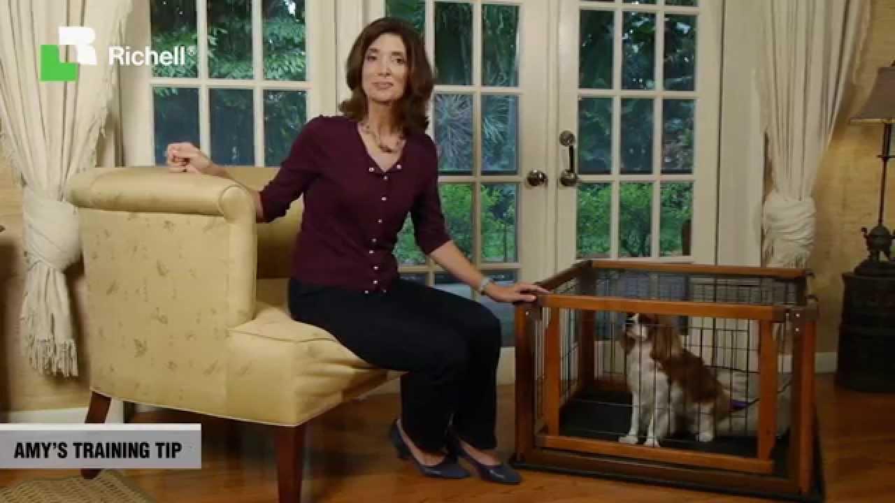 Richell Convertible Elite Pet Gate Youtube