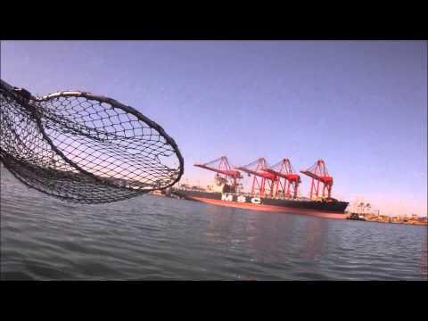 Garrick in durban harbour