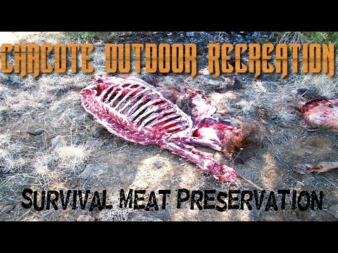 Meat Preservation Survival