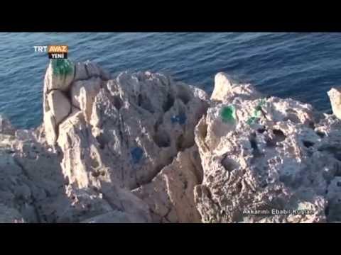 Akkarınlı Ebabil Kuşları - Adrasan - Antalya - TRT Avaz