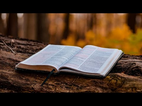 Desiring to hear the word of god