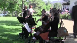 String Trio Los Angeles Classical Wedding Musicians for Events