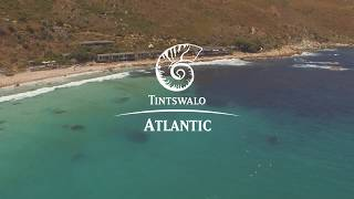 Dolphins at Tintswalo Atlantic