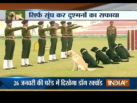 Army Dogs are Ready to Perform during Republic Day Parade at Rajpath