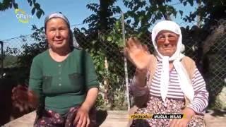 Yörükoğlu - Muğla Milas Altepe Köyü