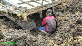 Tài xế trẻ lái xe kéo lúa 4 năm bị lầy,quá tội nghiệp cho em luôn/the car is bogged down.